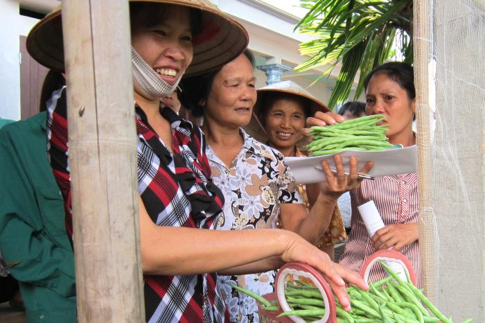 Women and youth at the heart of the shift to sustainable food systems in Vietnam
