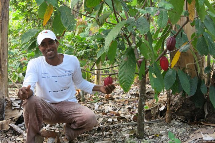 """El """"Edén de cacao"""" en Esmeraldas, Ecuador"""