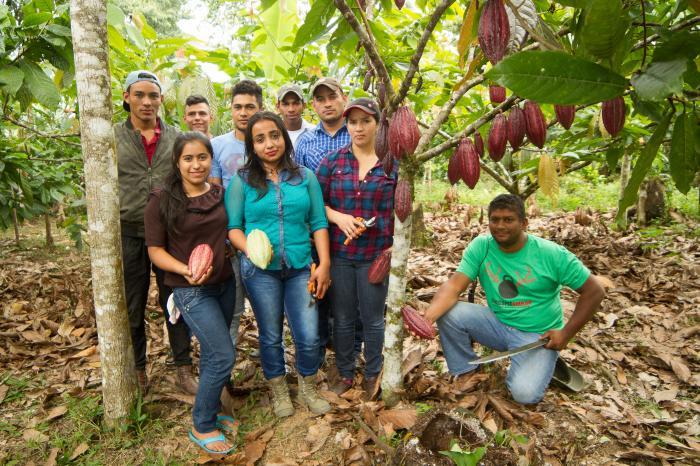 Honduras a las puertas de un nuevo Acuerdo Marco para cacao