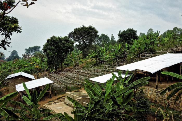 La microstation de lavage de Katanda de la Coopérative Kawa Kabuya gagne le concours Taste of Harvest DRC 2020!!!