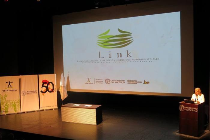 Proyecto de negocios inclusivos en la cadena de bananos organicos gana el concurso LINK en Perú