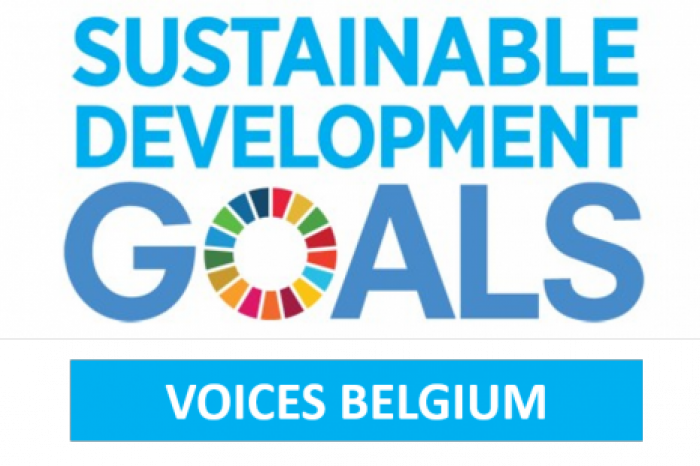 Rikolto is SDG Voice 2019 met