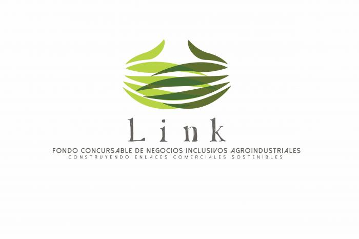 Vídeo sobre LINK y modelos inclusivos de negocio