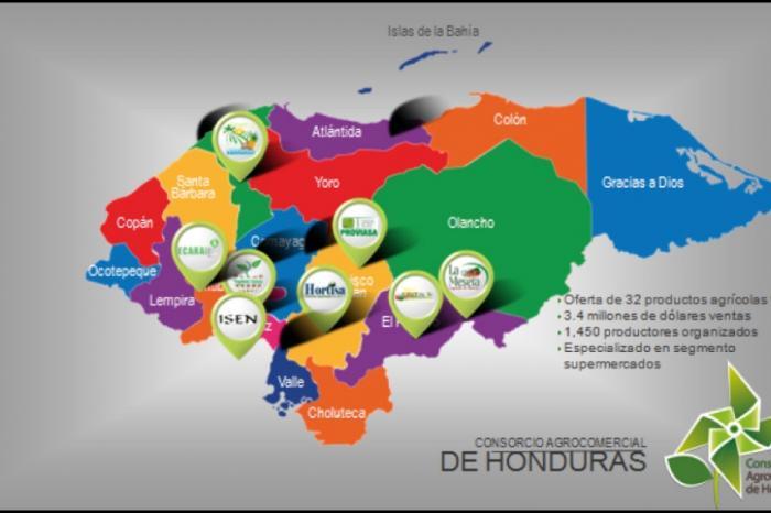 Consorcio Agrocomercial de Honduras: Un modelo de asociatividad comercial que mejora la posición de los pequeños productores en los mercados