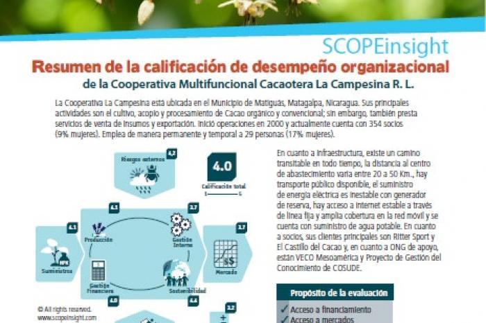 Resumen de la calificación del desempeño organizacional de la Cooperativa La Campesina