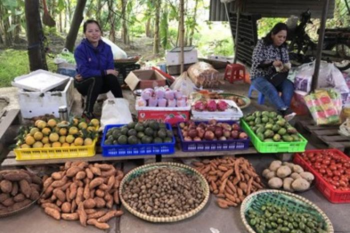 Increasing fruit and vegetable intake for consumer