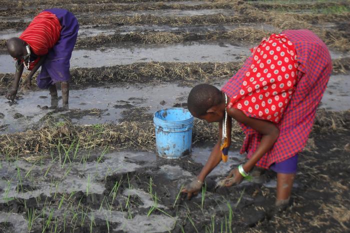 A brighter future in Maasai Simanjiro, Tanzania