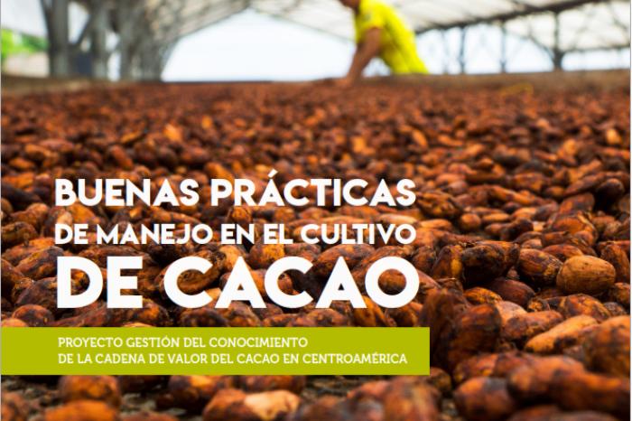 Buenas Prácticas en el Manejo del Cultivo del Cacao