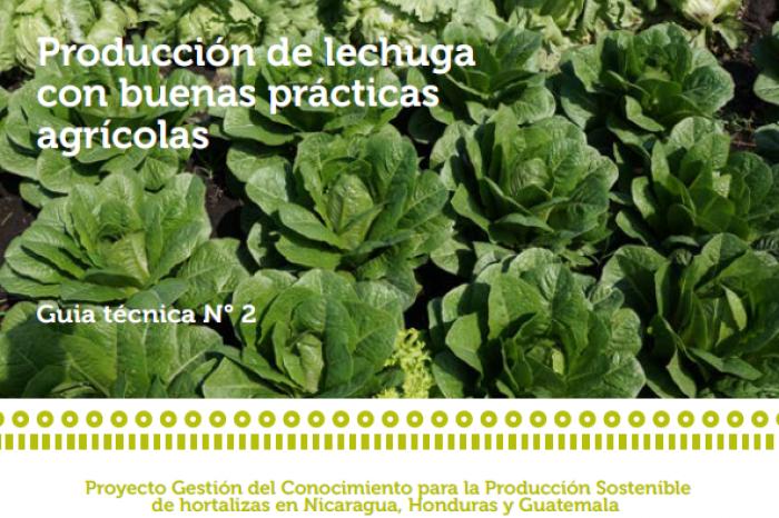 Guia técnica: Producción de lechugas con Buenas Prácticas Agrícolas