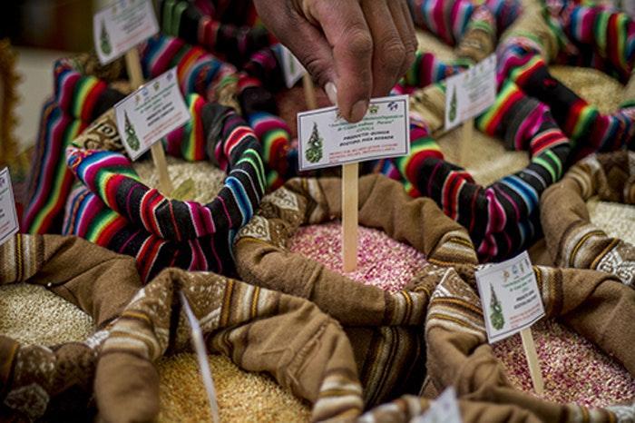Culinair festival Mistura in Peru
