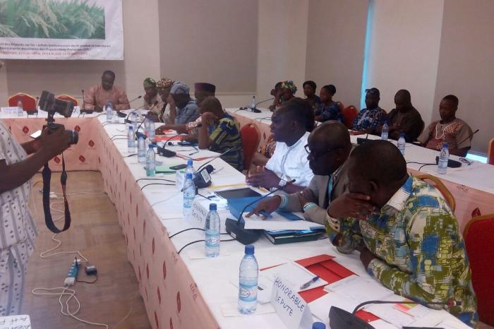 Les Organisations Paysannes rizicoles du Bénin engagent les parlementaires du pays à leur cause