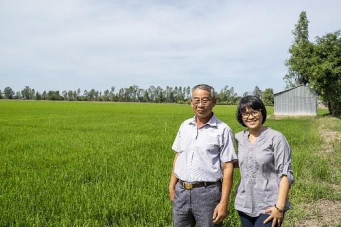 Hợp tác với các thành phần tư nhân để củng cố các doanh nghiệp đối với chuỗi giá trị gạo bền vững