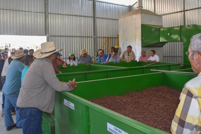 UE conoce avances en la calidad del cacao de Olancho