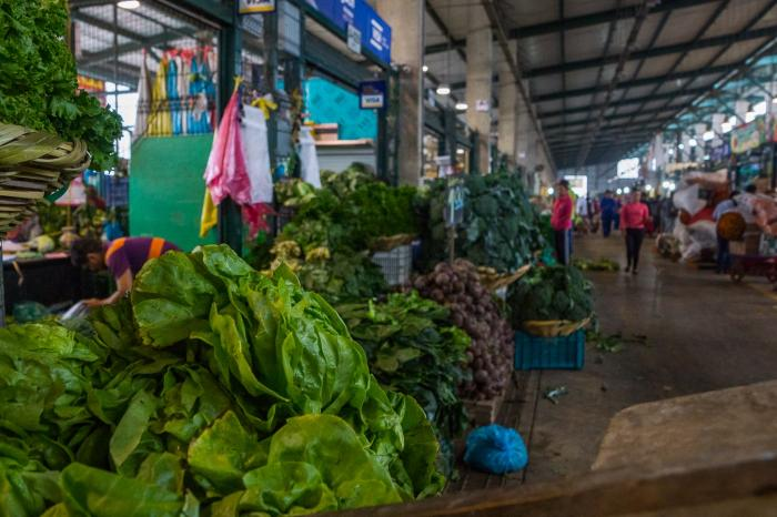 Alimentación urbana sostenible ¿Cómo motivar a las municipalidades?