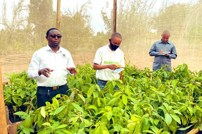 A high-level visit to showcase fruits and vegetables as essential building blocks for a sustainable future in Njombe
