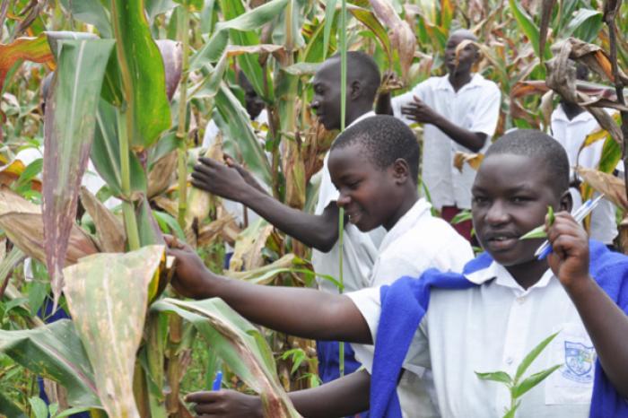 Jongerenboerderijen in Oeganda: Een bezoek aan het verleden om de toekomst te zien.