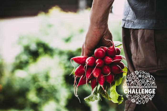 """""""Zichtbaarheid en positionering van seizoensgroenten in supermarkten kunnen beter"""""""