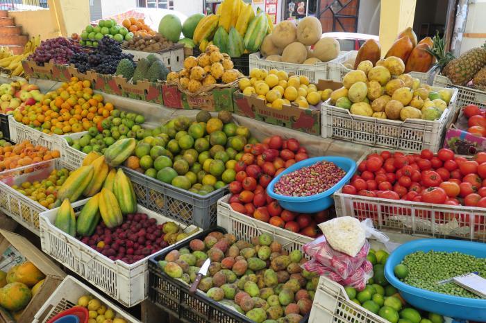 Productores de hortalizas participan en una gira de intercambio comercial