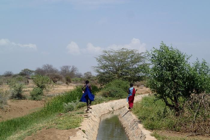 Droogte in Noord-Tanzania zet aan tot nieuwe vormen van landbouw en veeteelt