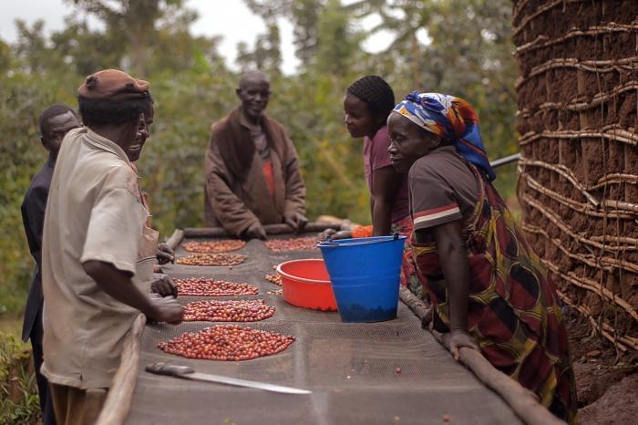 Léopold Mumbere over de veerkracht van Congolese boeren