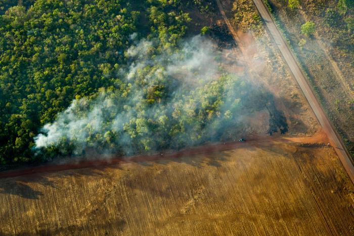 Ontbossing door onze consumptie? Dit is dé kans om het te stoppen