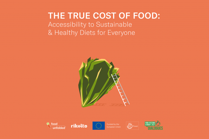 The true cost of food: access to healthy & sustainable diets