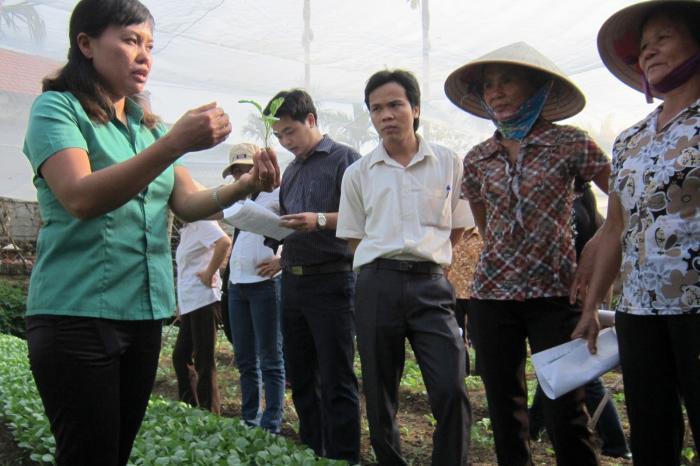 Participatief label versterkt vertrouwen in veilige groenten