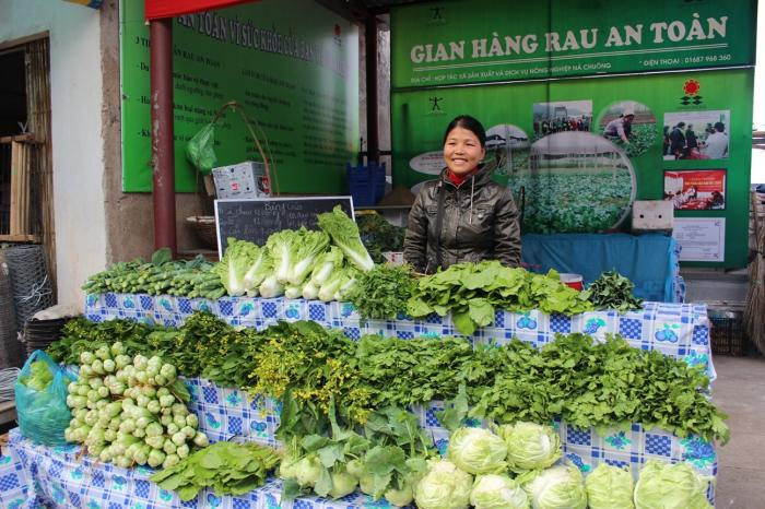 Cultivating healthy vegetables in Vietnam