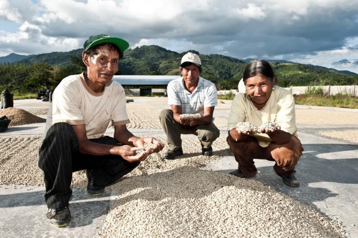 Het rijk van het Peruaans goud