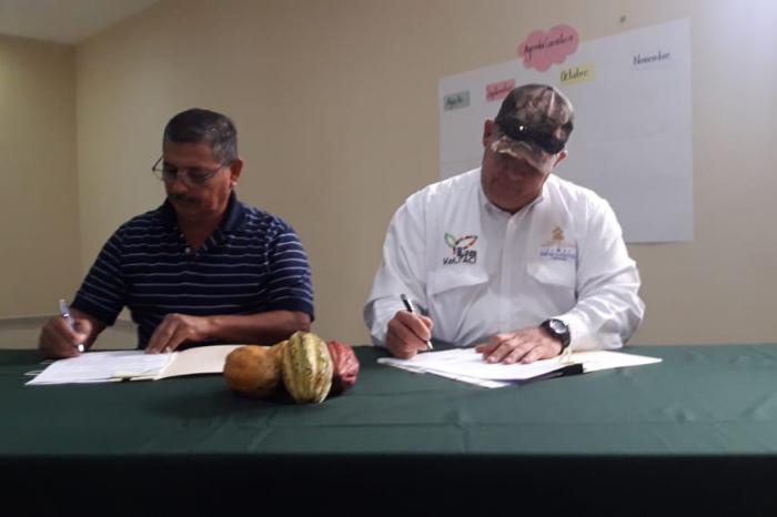 Honduras: 15 mil empleos promete el nuevo Acuerdo Marco para el Cacao