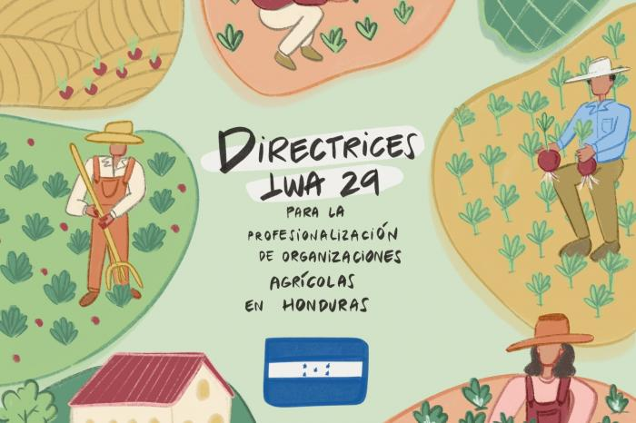 IWA 29: la normativa de profesionalización de organizaciones agrícolas que avanza en Honduras