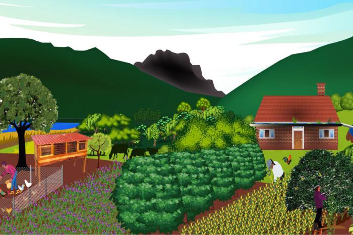 Echando a perder se aprende: Transición agroecológica