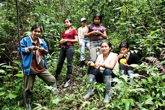 Fortaleciendo el sector de cacao en Ecuador