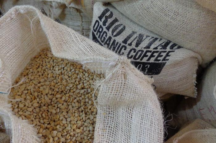Koffie in Intag, Ecuador