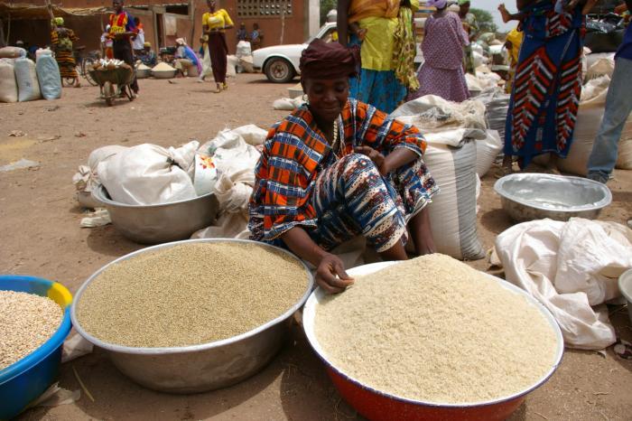 Un modèle d'affaire innovant pour améliorer les revenus des femmes étuveuses au Burkina Faso