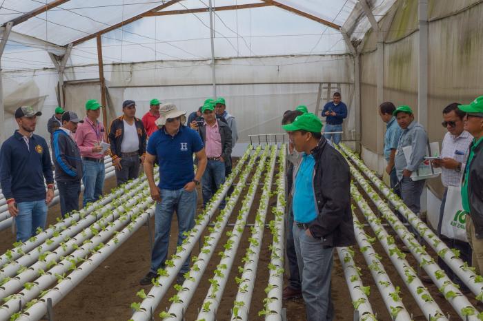 Vegetales sostenibles para Centroamérica - Completado