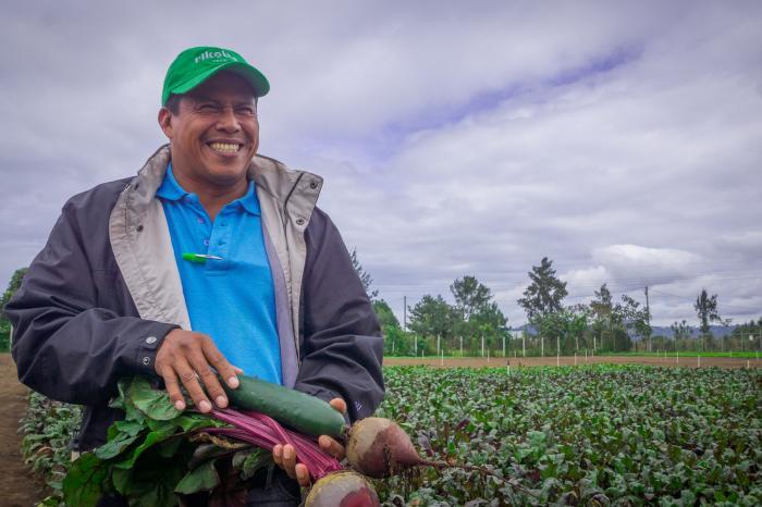 Vegetales sanos hacia mercados modernos