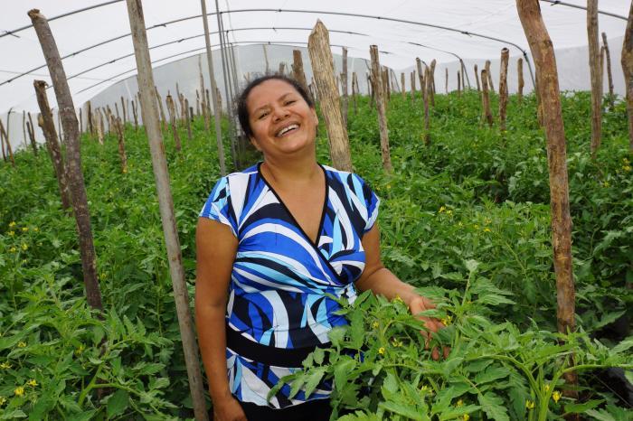 Paisajes sostenibles transformando el sector hortícola en Nicaragua