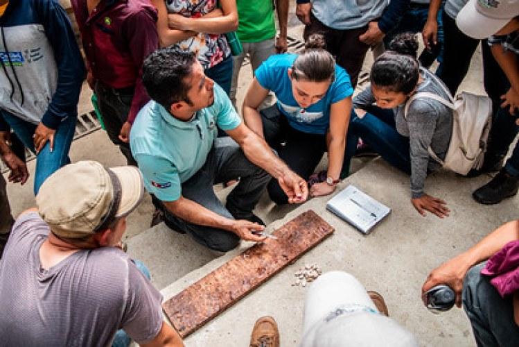 Proyecto Gestión del conocimiento en la cadena de valor de cacao en Centroamérica