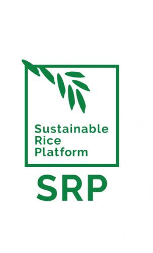 The SRP Standard in a nutshell