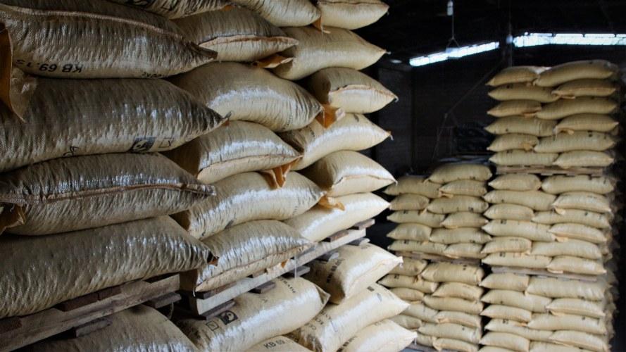 UNOCACE pilas de sacos de cacao