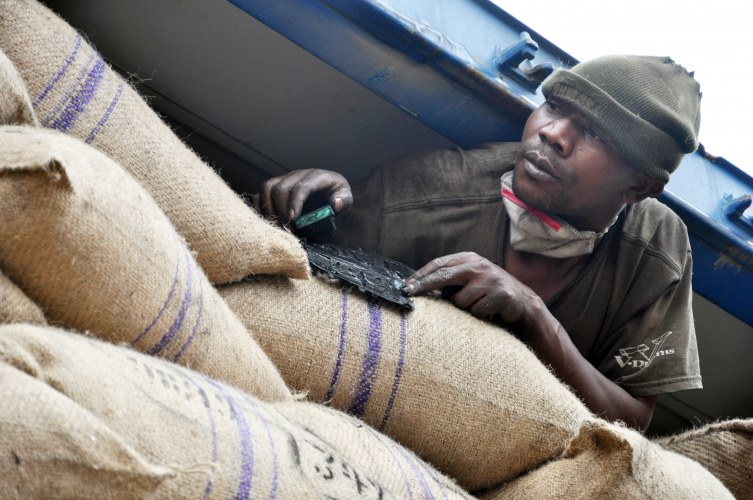 Rikolto œuvre aux côtés des caféiculteurs congolais pour les conquérir les marchés rémunérateurs. Ici, le chargement du conteneur de CKK destiné à Colruyt Group.  Photo : Ivan Godfroid