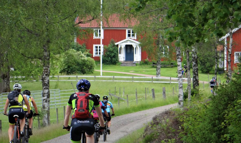Midsummer Classic red barns of smaland