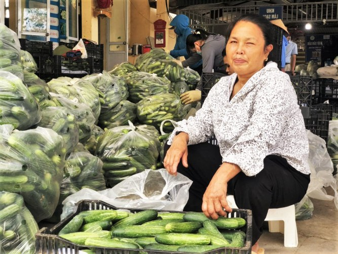 An Hoa Cooperative farmer packing cucumbers