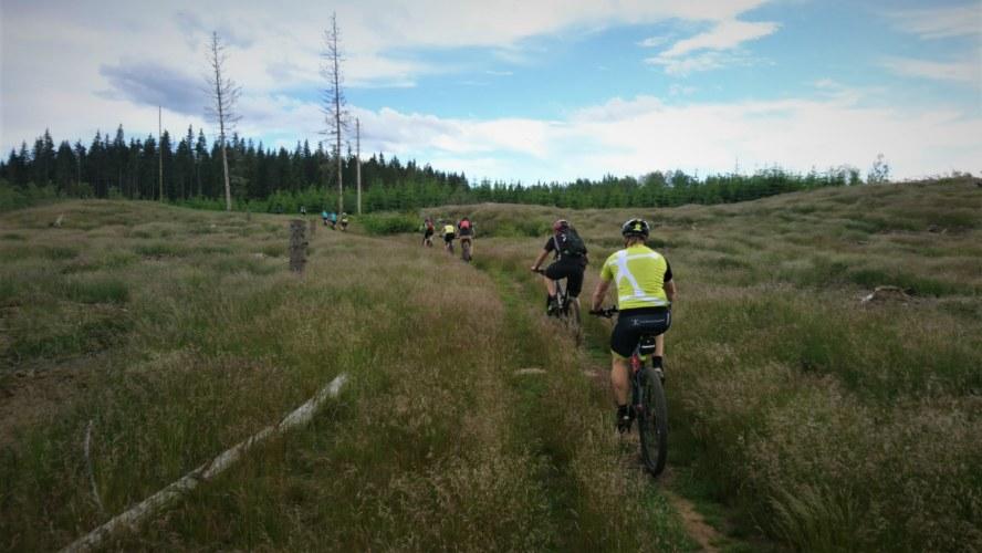 Rikolto Midsummer Classic trail